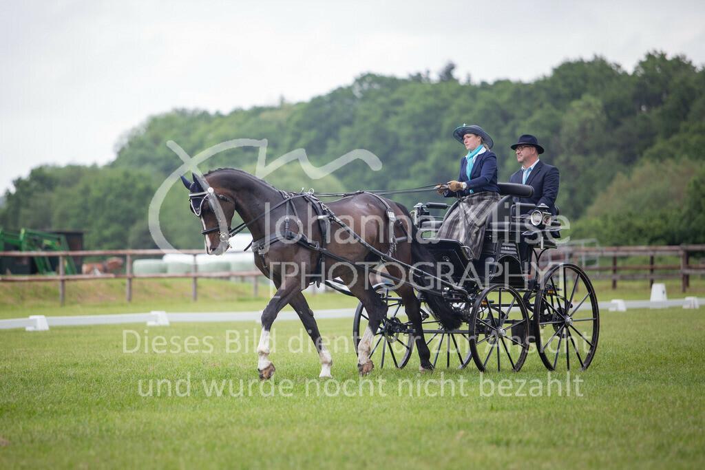 190525_Fahren-005 | Pferdesporttage Herford 2019 Fahren
