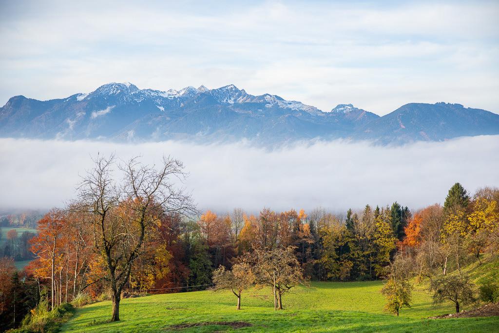 Blick in die bayerischen Voralpen