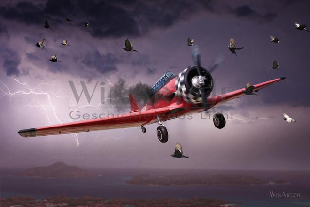 Landeanflug | Ein altes Flugzeug, Harvard AT-6G beim Landeanflug im Unwetter