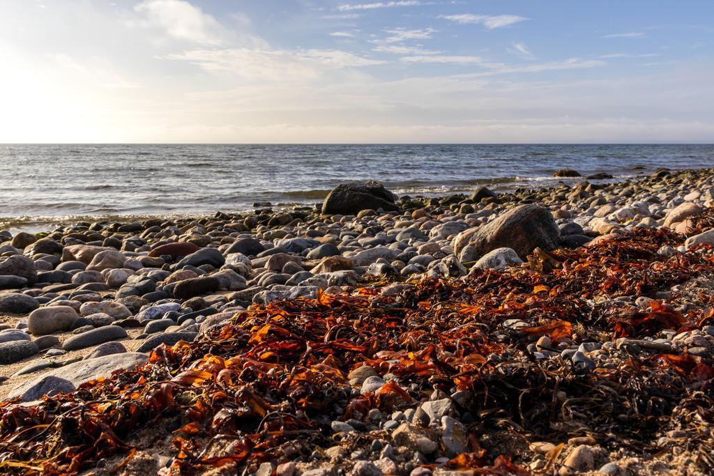Strandkörbe an der Ostsee | Herbst am Meer
