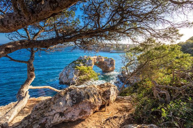 Es Pontas | Mallorca