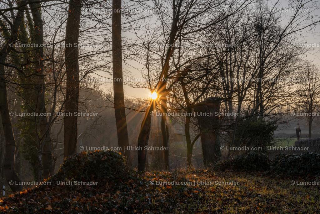 10049-11416 - Kloster Huysburg _ Huy   max. Auflösung 8256 x 5504