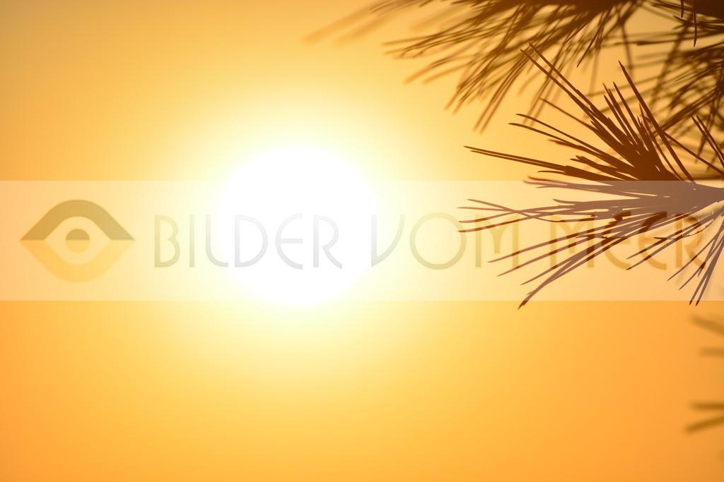 Bilder Sonne    Bilder Sonne Sonnenuntergang