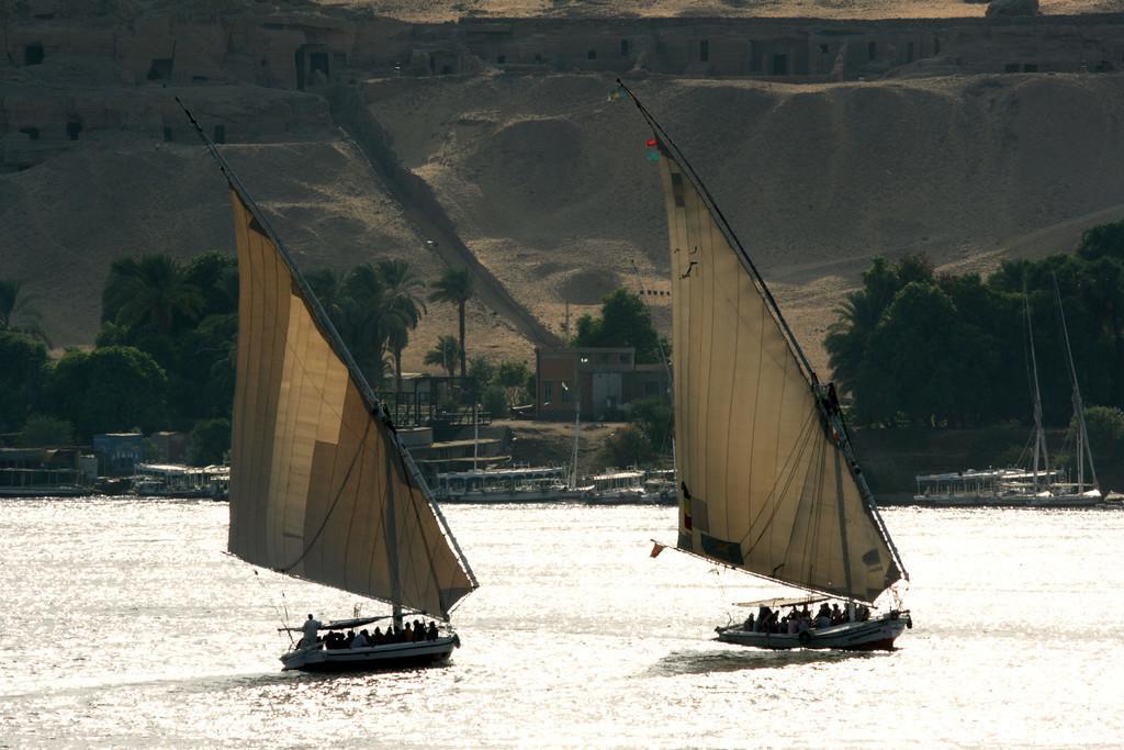Feluken | Ägypten: Felkuen, traditionelle Segelboote, auf dem Nil bei Assuan.