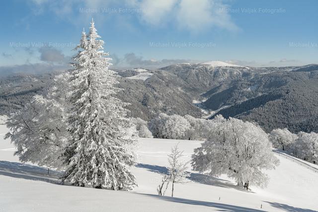Blick zum Feldberg im Schwarzwald | Blick vom Schauinsland bei Freiburg über die tief verschneite Landschaft zum Feldberg an einem schönen Wintertag.