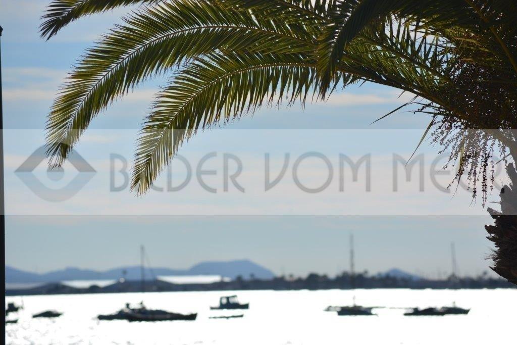 Bilder vom Meer   Schiffe unter Palmen