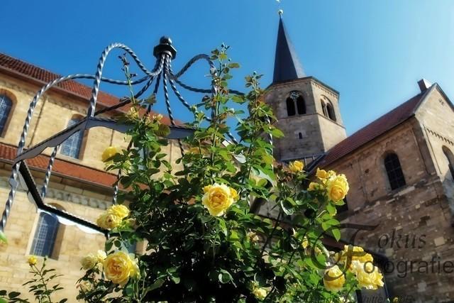 Rosen an der Godehardikirche | Wundervoll geschmiedeter Brunnen mit Rosen, im Hintergrund die Godehardikirche