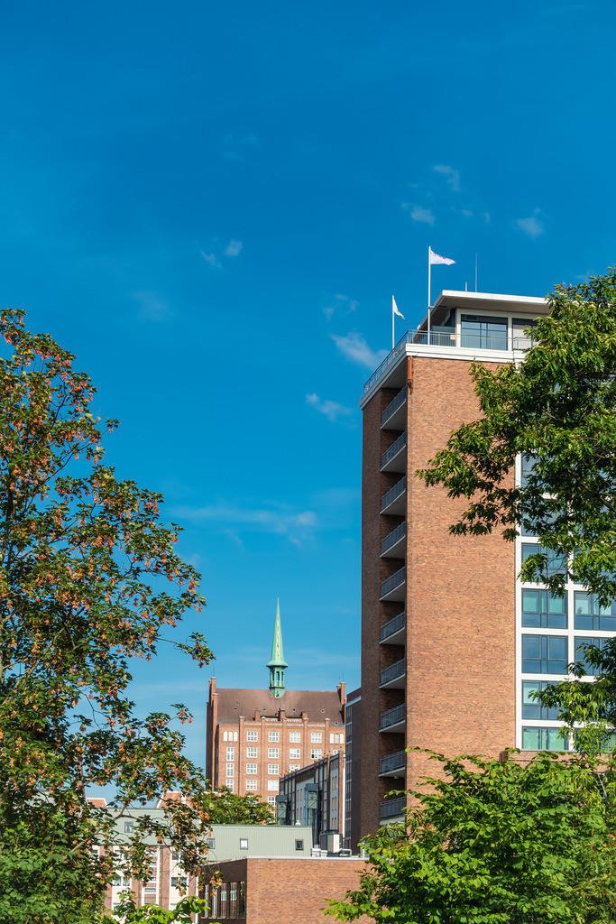 Häuser und Bäume in Rostock | Häuser und Bäume in Rostock.