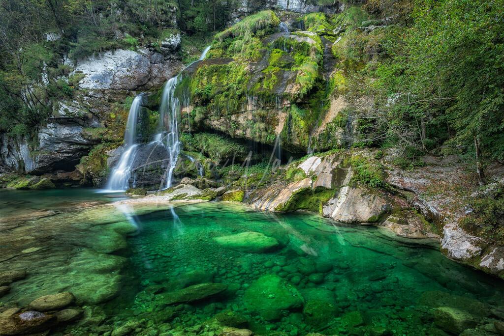 Das grüne Becken
