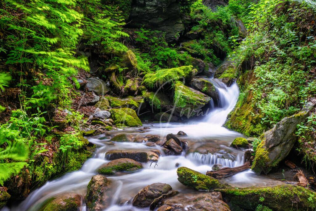 Natur in Innsbruck | Die Innsbrucker Sillschlucht