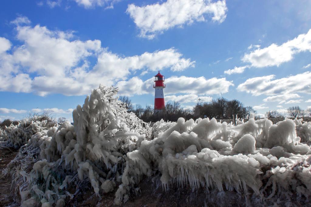 Leuchtturm in Falshöft | Vereiste Gräser und Zweige am Strand in Falshöft