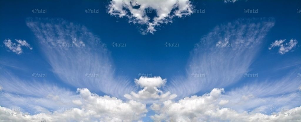 Wolkenflügel-Mai15_Flügel_1d