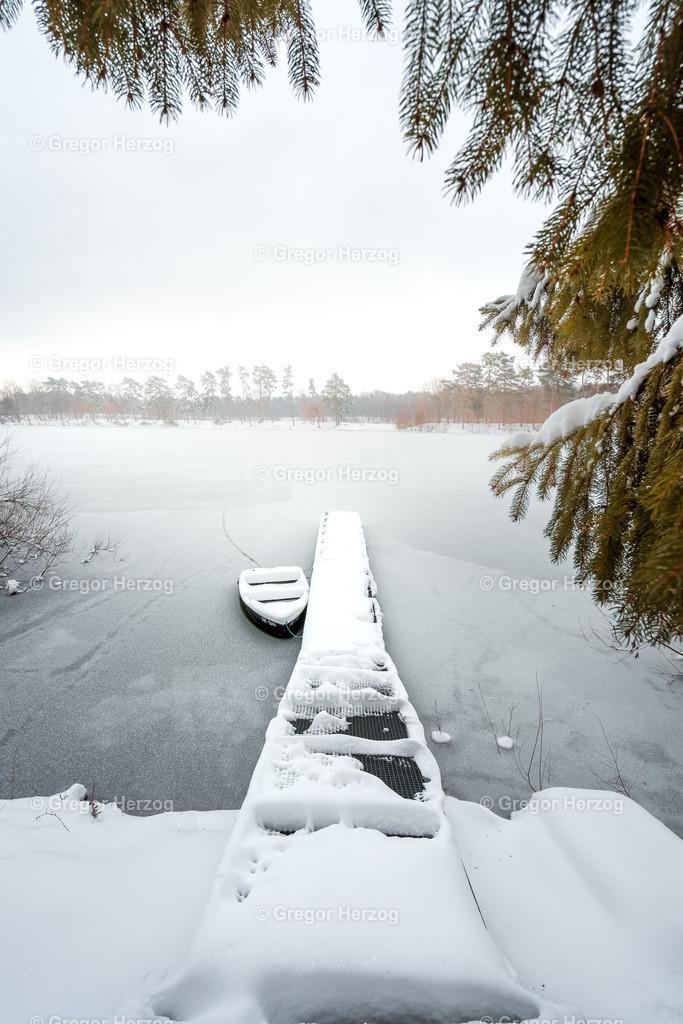 Winterruhe am Hiltruper See | Traumhaft diese Winterstimmung am Hiltruper See in Münster.