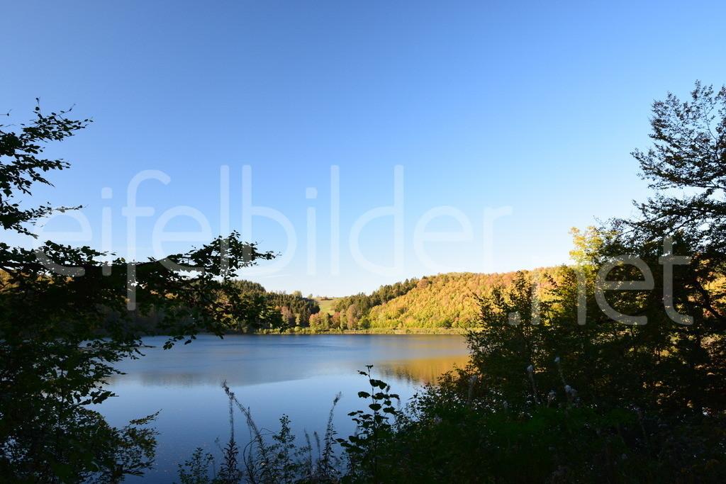 Das Pulvermaar im Herbst | Gillenfelder Maare, Gillenfeld, Eifel (Vulkaneifel)