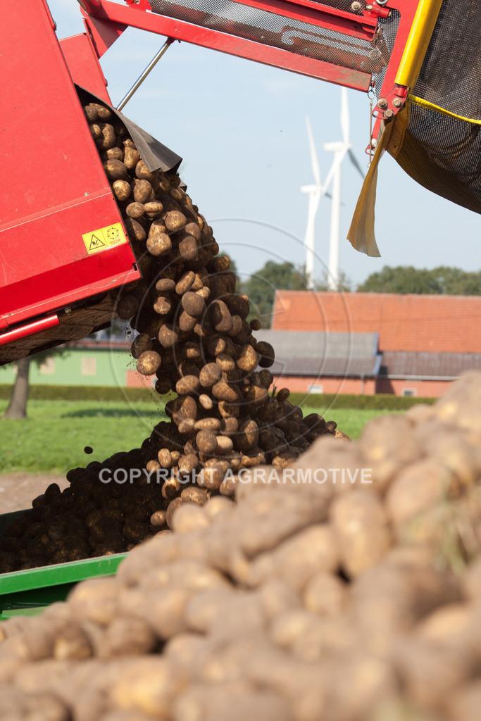 20110929-IMG_6046 | Ernte auf einem Kartoffelfeld - AGRARBILDER