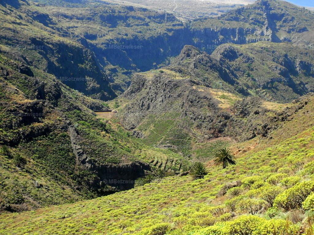 DSCF0051-2 | Im Mai auf La Gomera