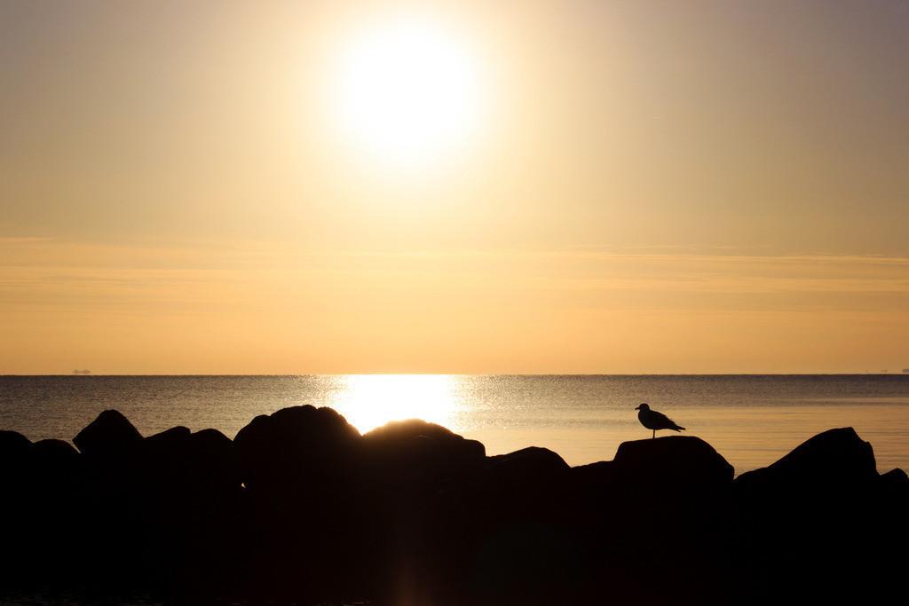Strand in Damp | Sonnenaufgang in Damp im Herbst