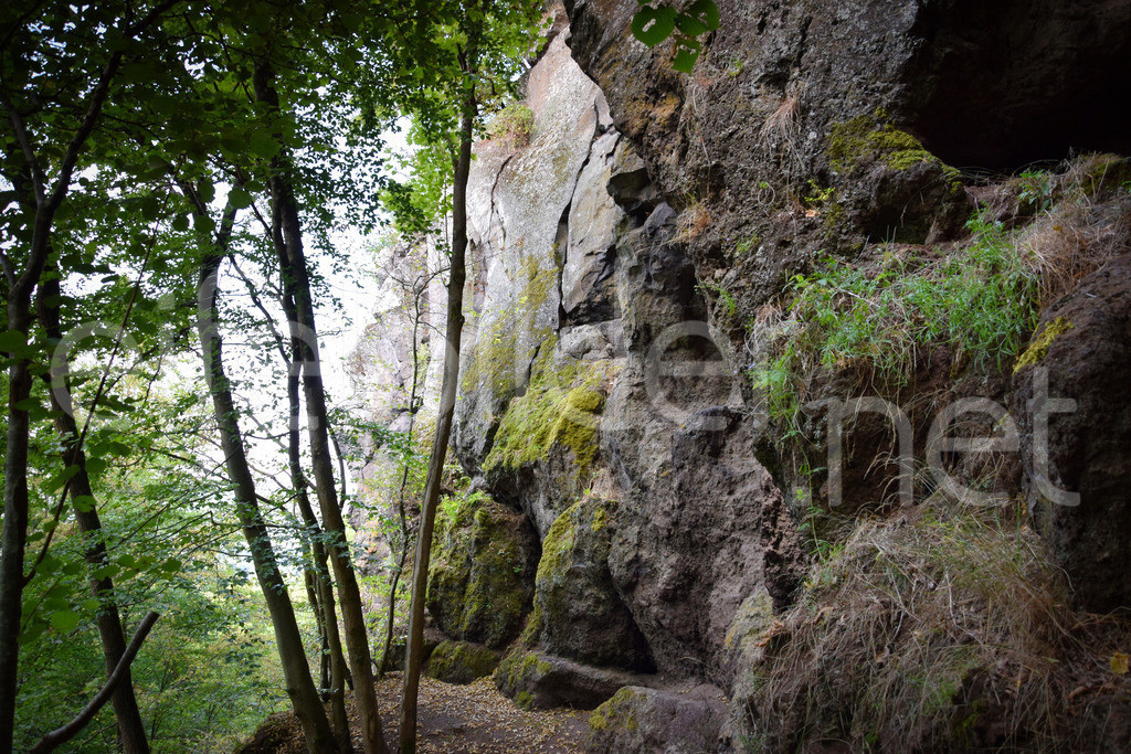 Landschaft bei den Steizeithöhlen | Bad Bertrich, Waldgebiet mit Steiinzeithöhlen bei Kennfus in der Vulkaneifel