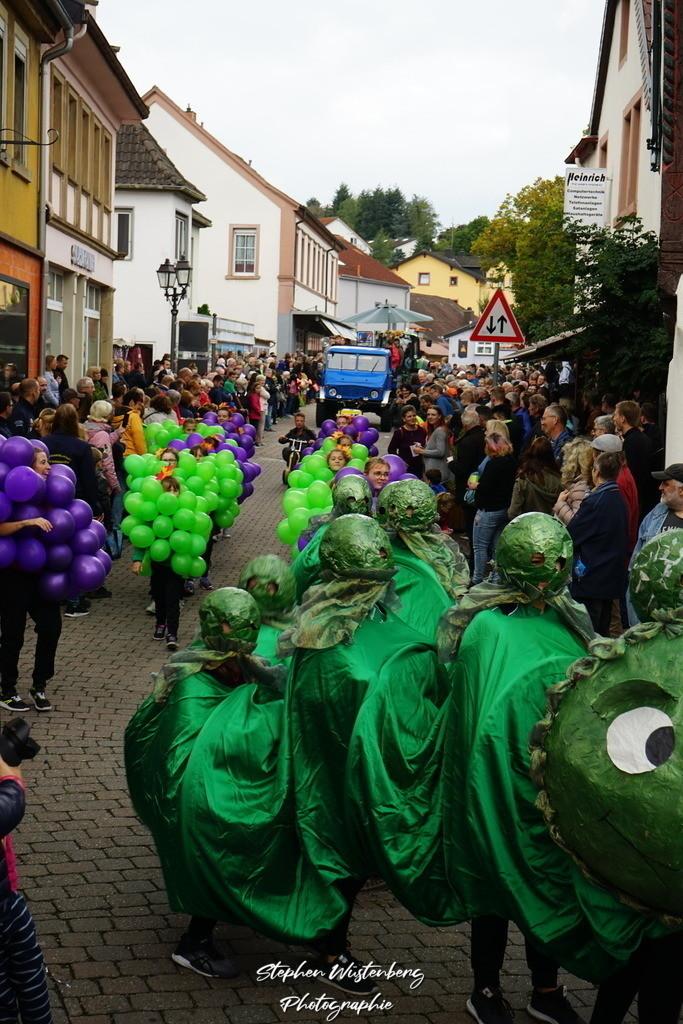 DSC07963 | Umzug zum 70.Nordpfälzer Herbstfest