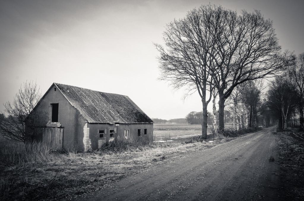 130330_1143-4979   Teufelsmoor im Winter