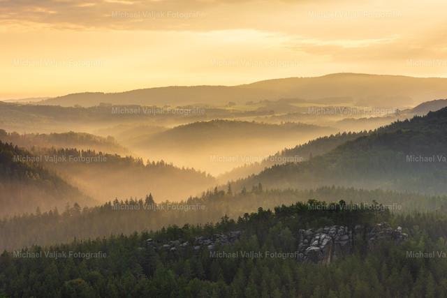 Blick ins Kirnitzschtal in der Sächsischen Schweiz  | Blick in Richtung Alter Wildenstein an einem Morgen im Sommer. Im Hintergrund liegt das Kirnitzschtal im Nebel, der von der Sonne in ein goldenes Licht getaucht wird.
