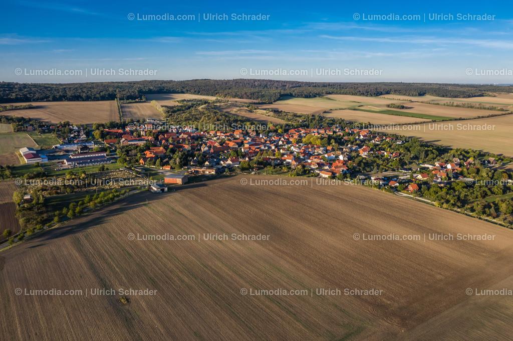 10049-50769 - Sargstedt bei Halberstadt