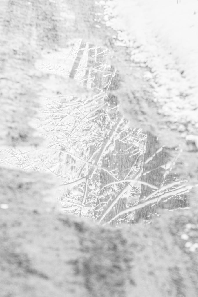 Spandau-eingeschneit (5 von 28)