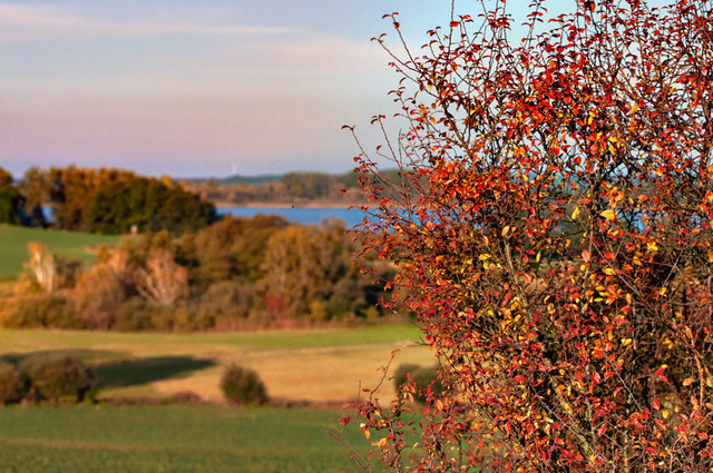 PICTRS_13-10-14Seenblick-013-Bearb5