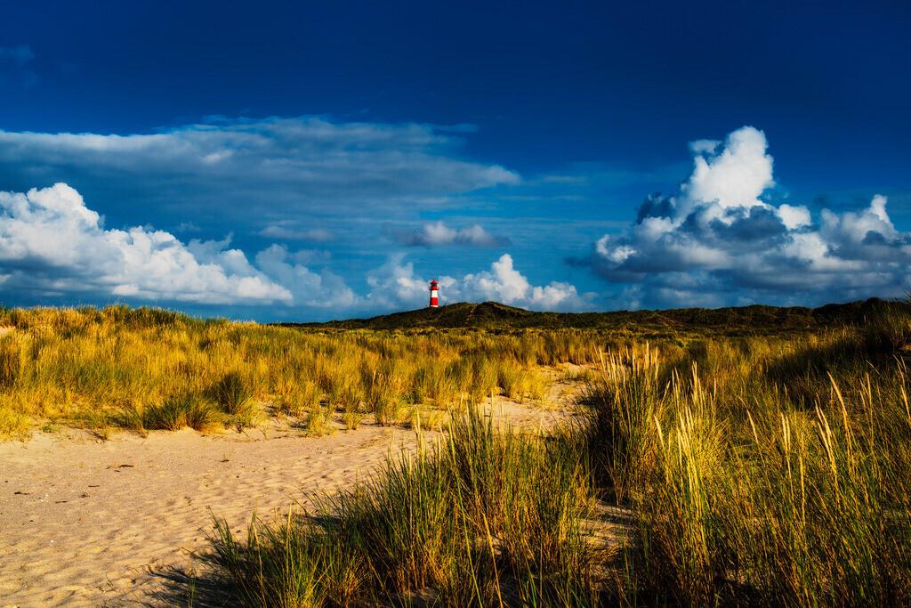 Leuchtturm auf Sylt | Leuchtturm auf Sylt mit Dünenlandschaft, Ellenbogen, Sylt