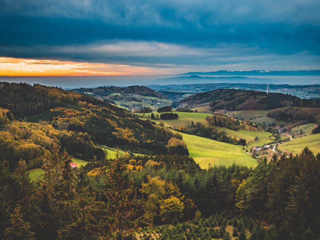 Schwarzwald | Herbststimmung bei Freiamt