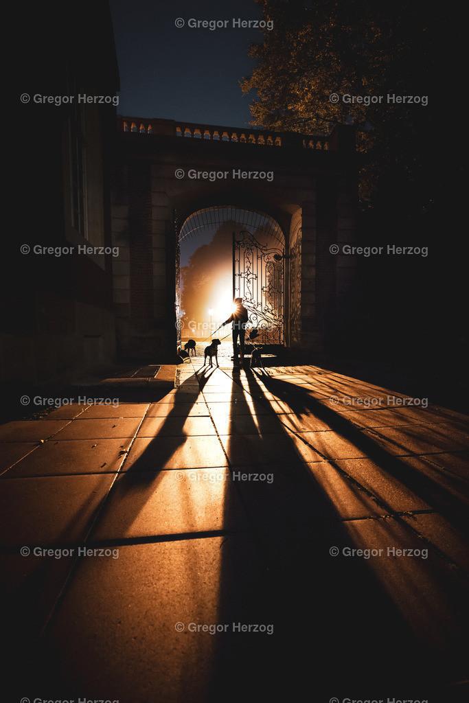 Licht und Schatten am Schloss