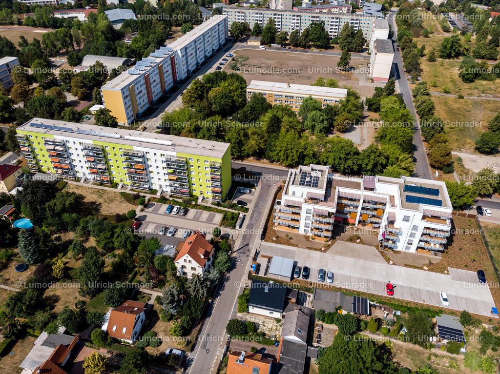 10049-51226 - Halberstadt