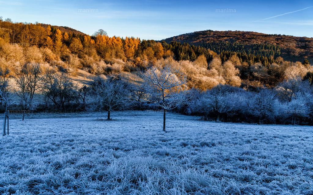 Eppstein    Winter