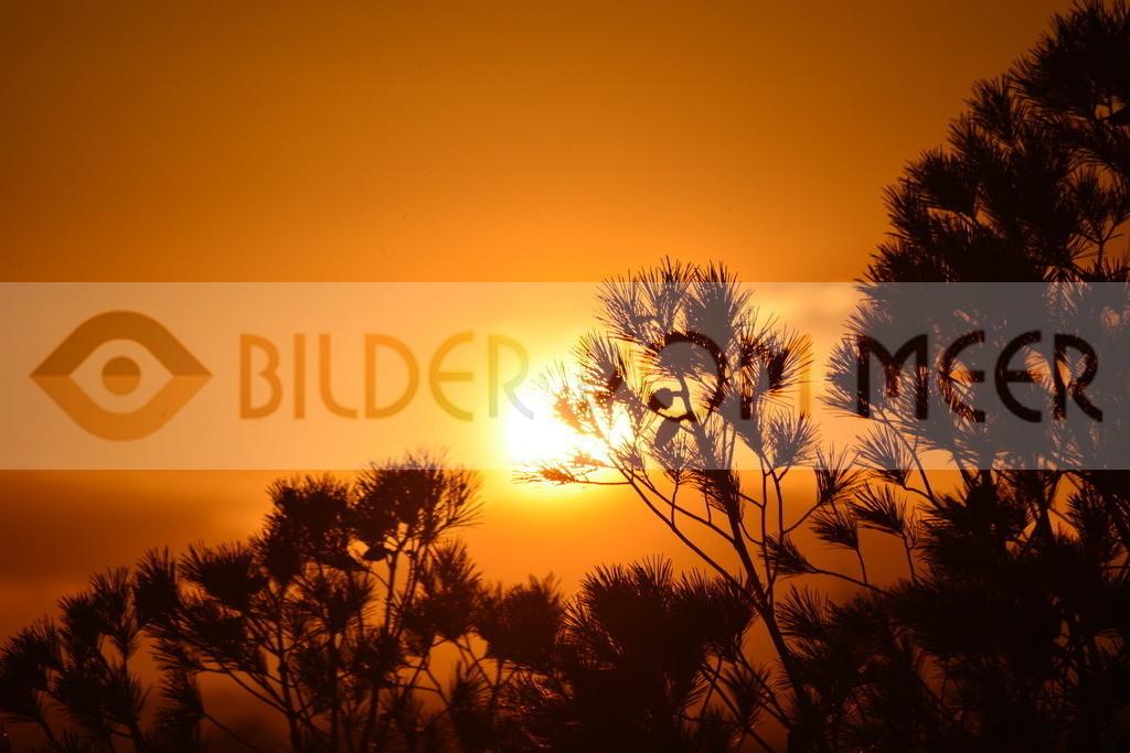 Bilder vom Meer als Wandbild   Sonnenuntergang Bilder Spanien