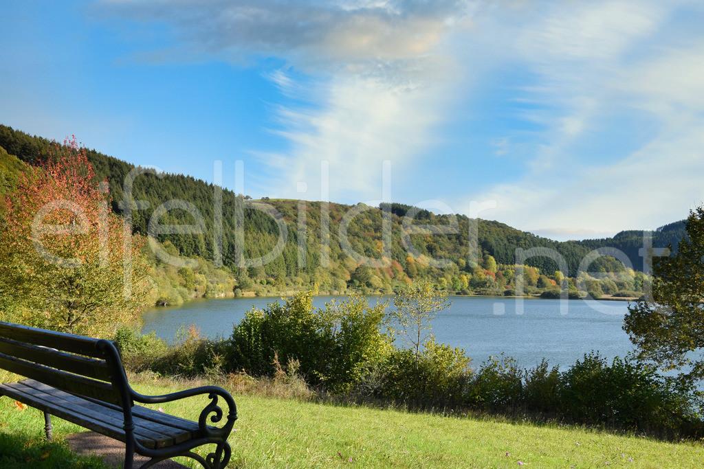 Herbst am Meerfelder Maar | Meerfeld, Vulkaneifel