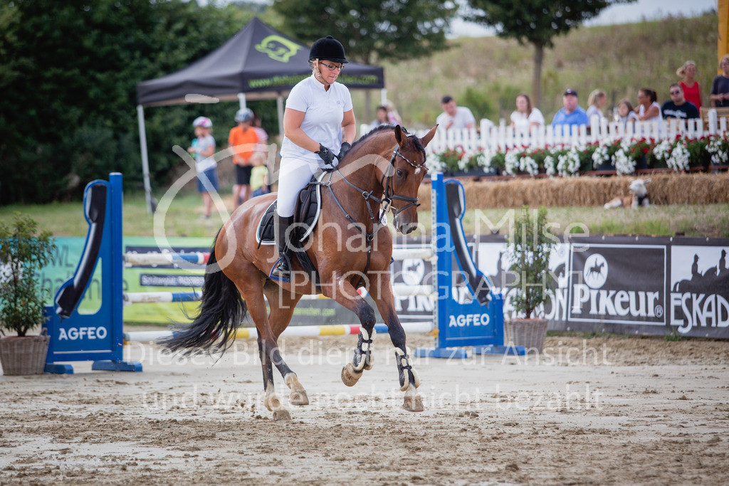 190801_BST_Springpferde-M_5-7J-427 | Braker Sommerturnier 2019 Springpferdeprüfung Kl. M* 5-7jährige Pferde