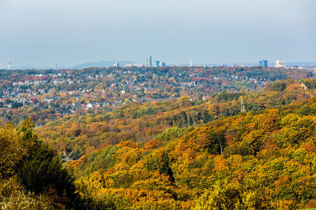 JT-131022-5854   Blick über den Herbstlichen Wald, Stadtteil Heisingen, auf die Skyline der Essener Innenstadt,