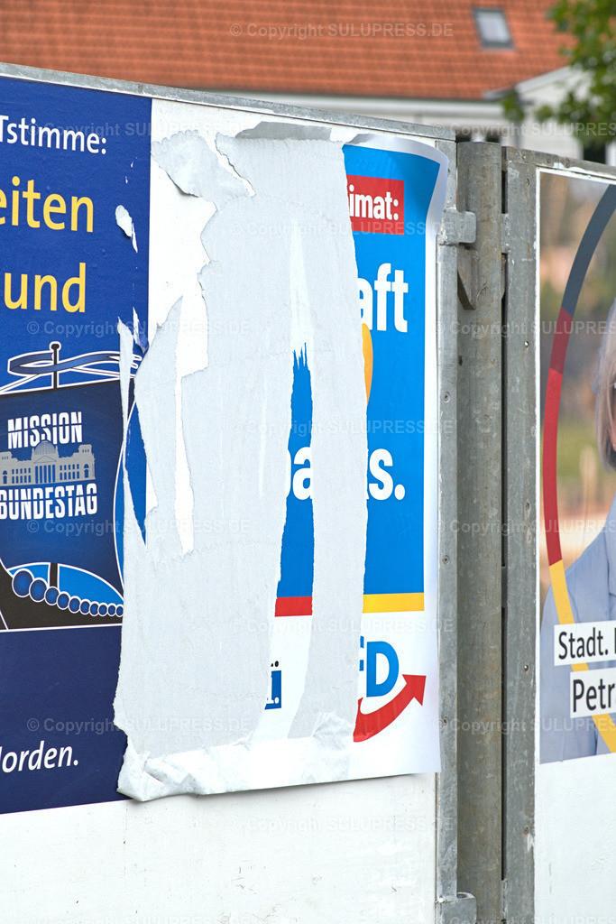 Abgerissenes AfD Wahlplakat in Schleswig   Schleswig, ein abgerissenes Wahlplakat der Alternative für Deutschland (AfD) an einer Werbetafel für Wahlwerbung.