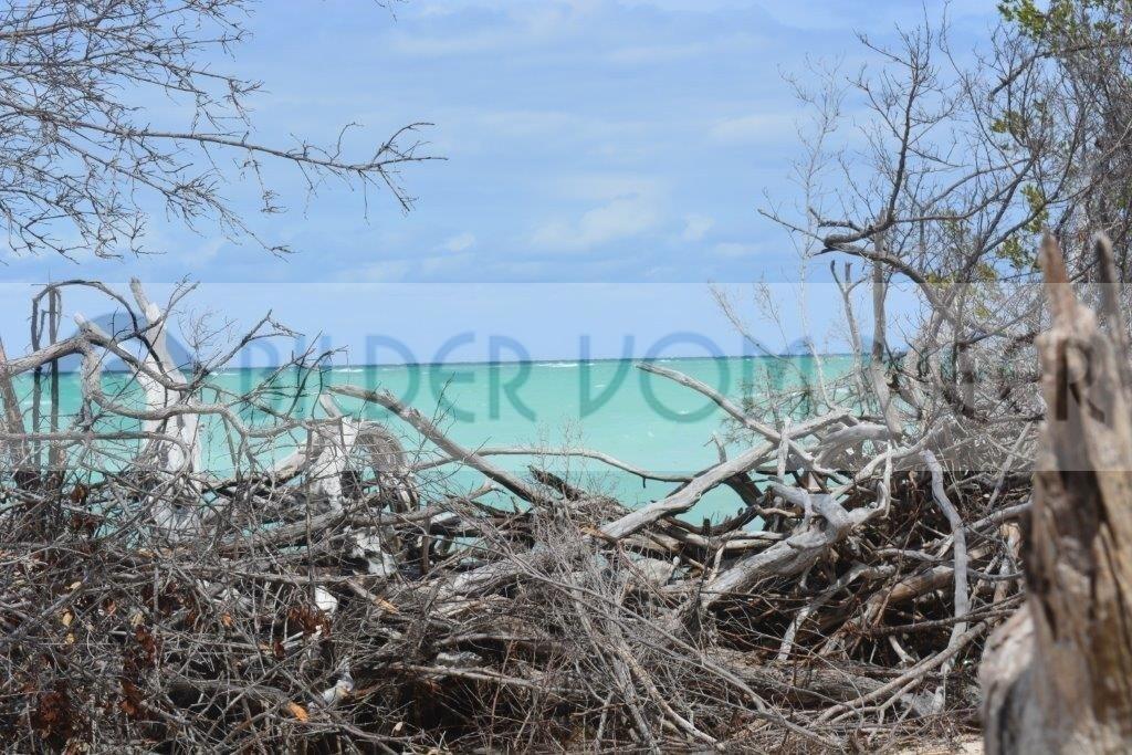 Fotoausstellung Bilder vom Meer Karibik | Blick von der kubanischen Insel Cayo Jutías auf das Meer