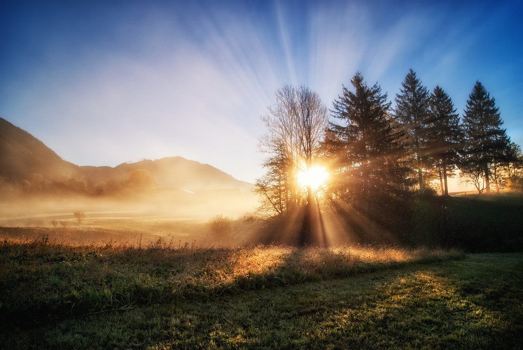 Morgenlicht | spürst Du den Neubeginn?