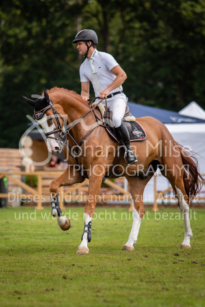 190719_LC_SprPf-A-034 | Lopshorn Classics 2019 Springpferdeprüfung Kl. A** 4-5 jährige Pferde