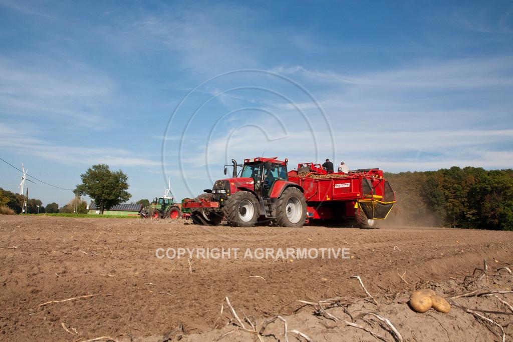 20110929-IMG_5863 | Ernte auf einem Kartoffelfeld - AGRARBILDER