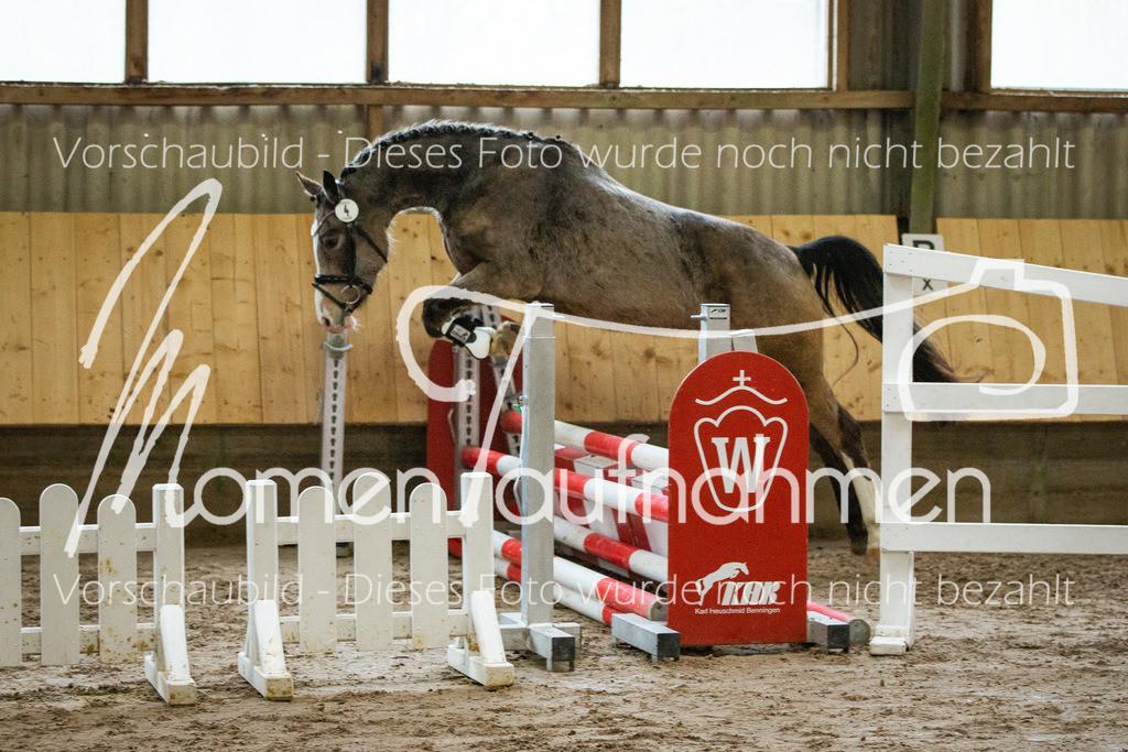 Freispringen-Pony-3j-22