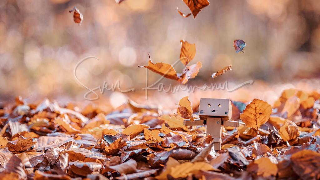 Autumn | Das Logo ist natürlich nur in der Vorschau und NICHT auf dem Druck.