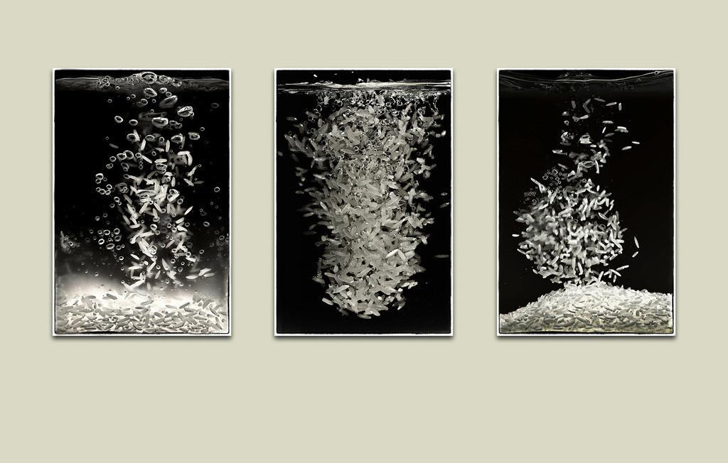 Trilogie von Reis | Reis sinkt in Wasser in verschiedene Phasen.