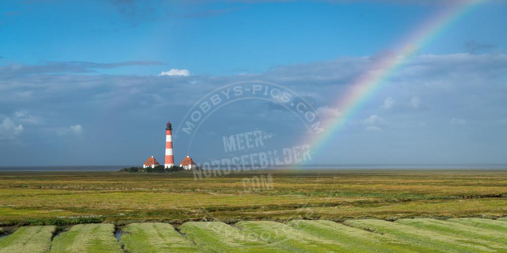 mobbys-pics.com-DSC00375 | Regenbogen Leuchttrum