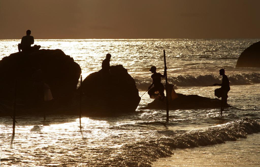 Sri Lanka | Sri Lanka, Fischer auf Stelzen, im Südwesten der Insel,