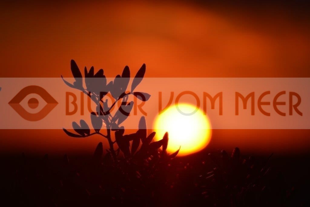 Bilder Sonnenuntergang am Meer | Sonnenuntergang Bilder in Spanien