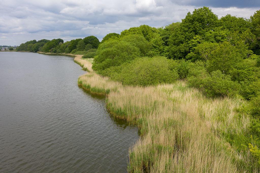 Ostufer Haddebyer Noor | Das Haddebyer Noor ist ein seeartiger Ausläufer der Schlei südlich von Schleswig. Die Luftaufnahme zeigt das Ostufer des Gewässers bei der Ortschaft Loopstedt.