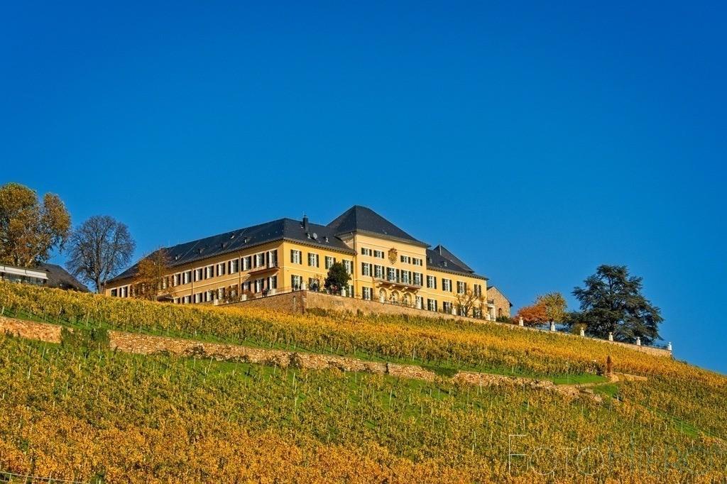 Schloss Johannisberg | Schloss Johannisberg im Rheingau. Seit 1200 Jahren wird hier Wein angebaut, seit 1720 ausschließlich Riesling.